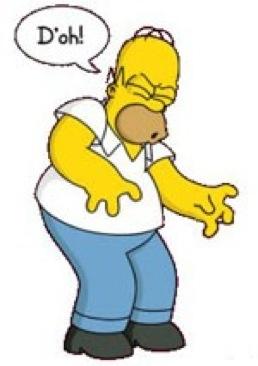 Final German Mission Homer-doh